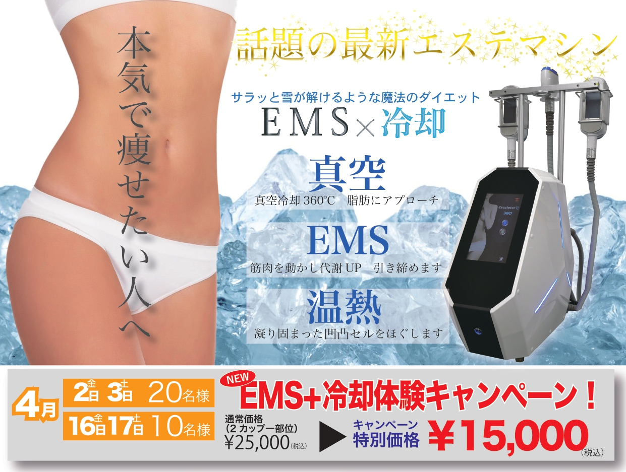 EMS 脂肪冷却ダイエット